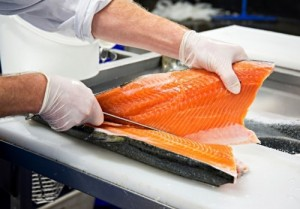 Fish filleters jobs